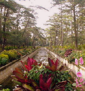 Wright Park, Baguio Philippines