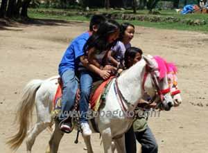 Horseback Riding at Wright Park, Baguio City